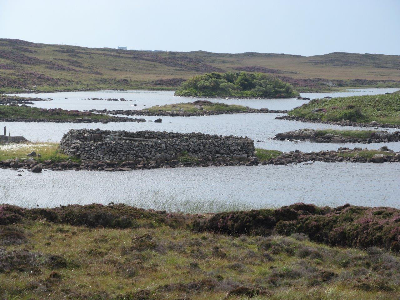 Ruin on Loch Druidibeg N Binnie